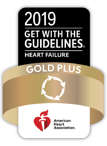 2019 GWTG Heart Failure Gold Logo