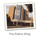rollins wing